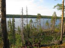 Kareliya, Russie Photographie stock libre de droits