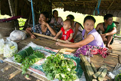 Karen selling vegetable. TAK THAILAND - NOV1 : Family Karen hill tribe offering fresh vegetables collected from wild into bamboo shack beside the main road Stock Photography