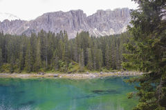 Karersee and tree Stock Images