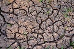 karg jord sprucken bakgrund torkar jord sprucken mudmodell Jord i sprickor Creviced textur Torkaland Miljötorka Arkivbild