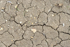 Karg jordning, bruten jord, torr jord i sommar Royaltyfri Fotografi