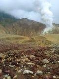Kargt landskap av monteringen Papandayan och dess brinnande svavelkrater, Java Indonesia Royaltyfri Bild