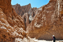 Kari - Atacama Imagem de Stock