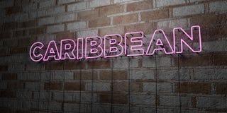 KARIBISCH - Glühende Leuchtreklame auf Steinmetzarbeitwand - 3D übertrug freie Illustration der Abgabe auf Lager vektor abbildung
