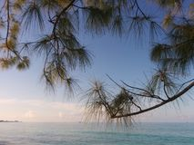 Karibische Ansicht Lizenzfreies Stockfoto