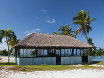 Karibische Hütte mit Palmen Stockfotografie