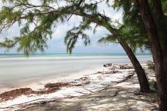 Karibische Landschaft Lizenzfreie Stockfotos