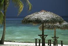 Karibische Meere mit Palme Lizenzfreie Stockbilder
