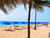 Karibische Strand-Szene Lizenzfreie Stockfotos
