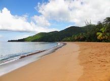 Karibische Strandlandschaft Stockbild