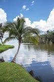 Karibischer Hintergrund Lizenzfreies Stockfoto