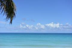 Karibischer Meerblick Stockfotos