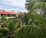 Karibischer Rückzug angeschmiegt unter den Palmen Stockfoto