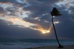 Karibischer Sonnenuntergang Stockbild