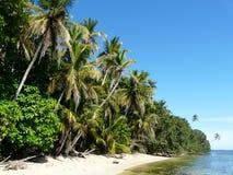 Karibischer Strand Stockfotos