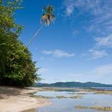 Karibischer Strand Stockfotografie