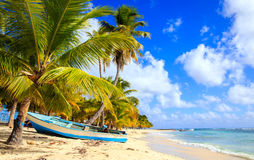 Karibischer Strand in der Dominikanischen Republik Stockfoto