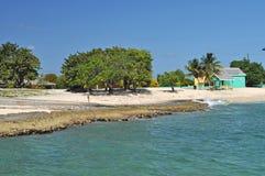 Karibischer Strand-großartiger Kaiman Stockfotos