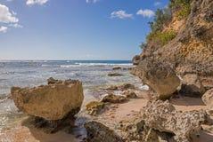 Karibischer Strand in Guadeloupe Stockfoto