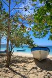 Karibischer Strand im kleinen tropischen Fischerdorf Freies Wasser Rio de Janeiro, Copacabana Baum auf dem Gebiet Blaue Himmel Do stockfotografie