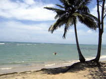 Karibischer Strand: kayaking Lizenzfreie Stockbilder