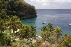 Karibischer Strand und Palmen, St Lucia Stockbild