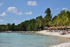Karibisches Leben Stockbild