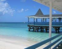 Karibisches Leben lizenzfreies stockbild