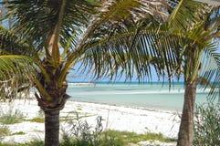 Karibisches Paradies Stockbild