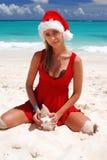 Karibisches Weihnachten Stockfotos