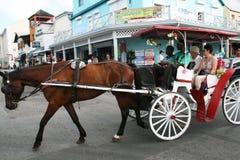 Karibisk chaise fotografering för bildbyråer