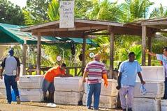 Karibisk fiskmarknad royaltyfri foto