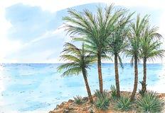 Karibisk hav-kust med palmträd stock illustrationer