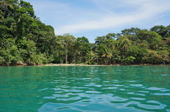 Karibisk kust av Costa Rica i den Punta uvaen Royaltyfri Fotografi