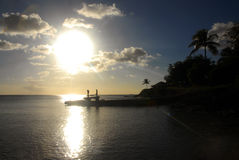 Karibisk kustlinje Royaltyfri Fotografi