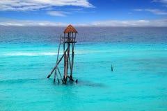 karibisk linje tyrolean vinande för havsturkos royaltyfri bild