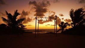 Karibisk Mayan soluppgång för Riviera palmträdstrand stock video
