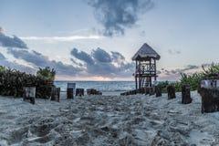 Karibisk morgonstrand Arkivbild
