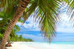 karibisk strand Arkivfoto