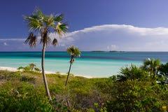 Karibisk strand i Kuba Arkivbild