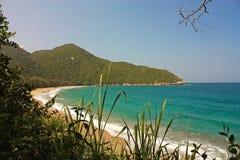 Karibisk strand med den tropiska skogTayrona nationalparken kolonn Arkivbild