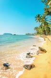 Karibisk strand mycket av palmträd mot det azura havet Royaltyfri Fotografi