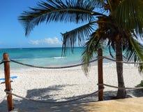 Karibisk strand som inramas av en palmträd och en strandpromenadräcke Royaltyfria Bilder