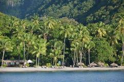 Karibiska dröm- den naturliga strandstången gömma i handflatan skogen royaltyfria foton