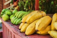Karibiska frukter royaltyfri fotografi