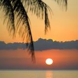 karibiskt över havssolnedgång Arkivbild