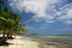 karibiskt Royaltyfri Fotografi