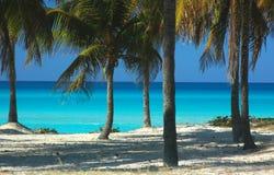 karibiskt hav Arkivbilder
