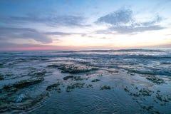 Karibiskt regn Forest Beautiful för Costa Rica Ocean Water Beach Paradise semesterträd Arkivbild