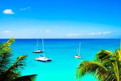 karibiskt segelbåthav Arkivbild